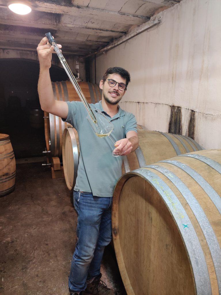 Les vins de la Loire - Les caves du domaine Belargus – Livraison de vins d'exception à domicile