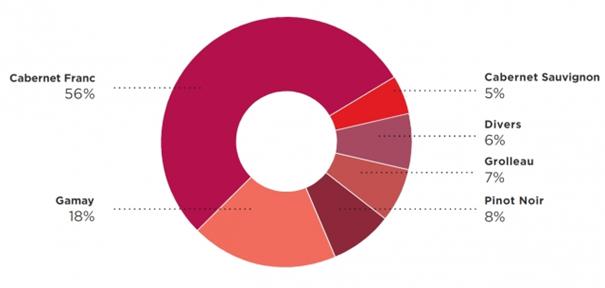 Les vins de la Loire - pourcentage des vins rouge - Livraison de vins d'exception à domicile