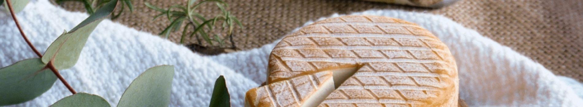 Nos accords fromages vegans et vins bio